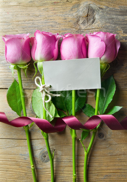 Flores dom membro rosa rosas Foto stock © unikpix