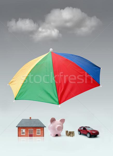 Insurance protection concept  Stock photo © unikpix
