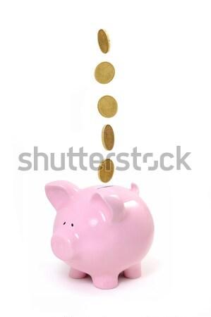 Kumbara madeni para düşen para finanse damla Stok fotoğraf © unikpix