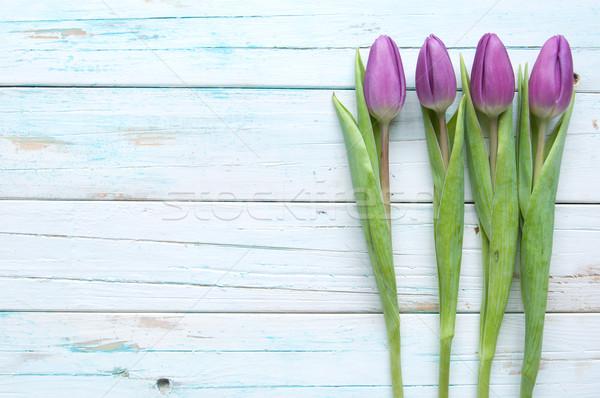 Tulipanes primavera espacio flor madera Foto stock © unikpix