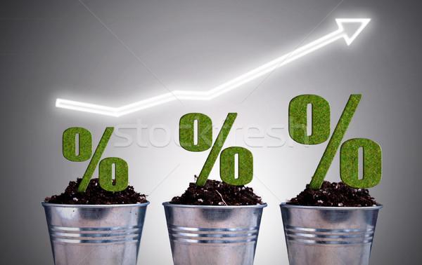 Perentage growth concept Stock photo © unikpix