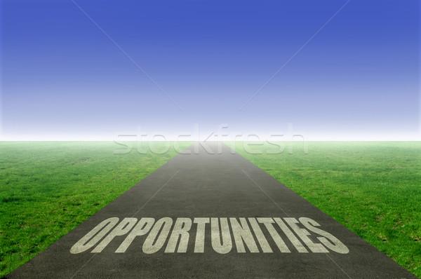 Opportunities Stock photo © unikpix