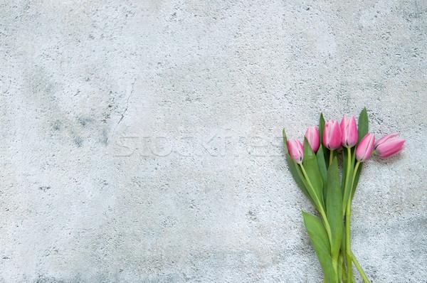 Pembe lale bahar düğün arka plan Stok fotoğraf © unikpix