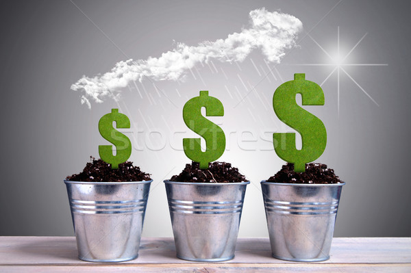 Business dollar growth Stock photo © unikpix