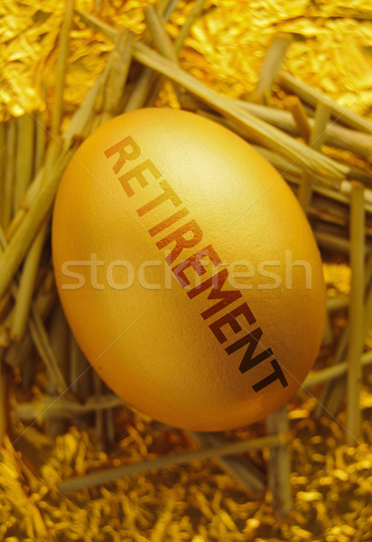 Retirement nest egg  Stock photo © unikpix