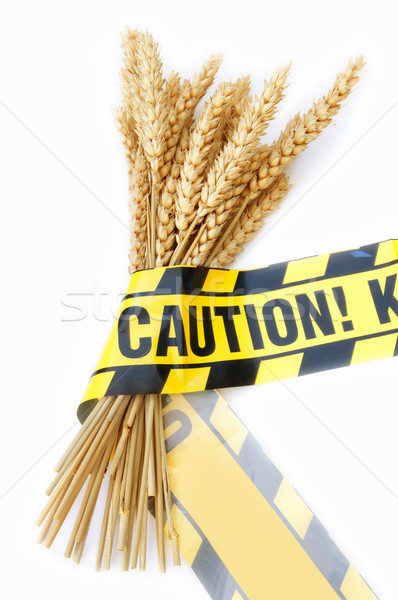 Gluten free diet  Stock photo © unikpix