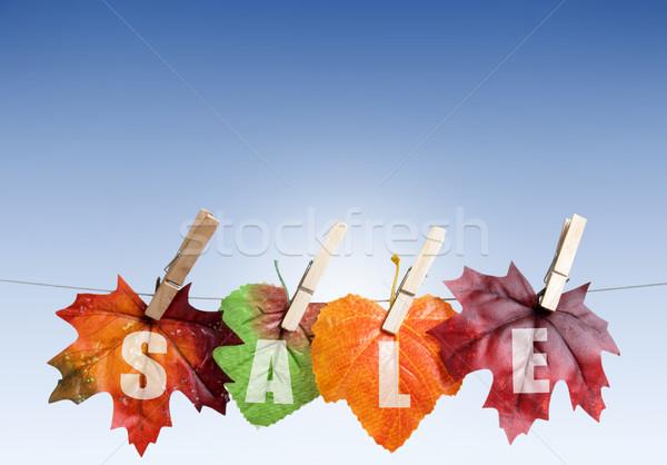 Outono de vendas folhas enforcamento roupa linha Foto stock © unikpix