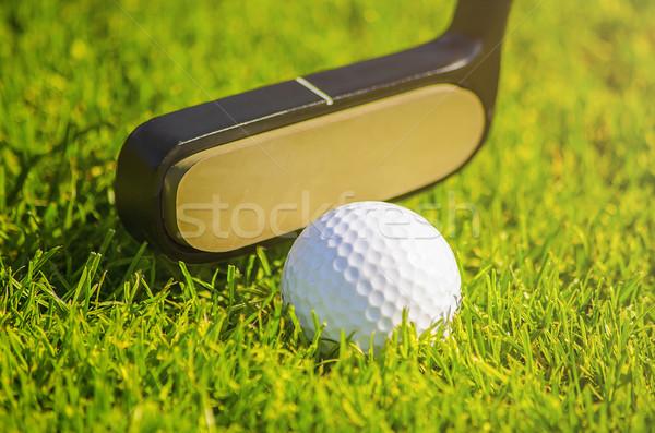 shoting a golf ball  Stock photo © unkreatives
