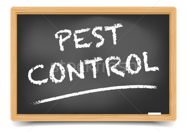 Blackboard Pest Control Stock photo © unkreatives