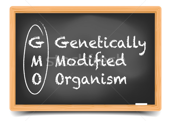 Blackboard GMO Stock photo © unkreatives