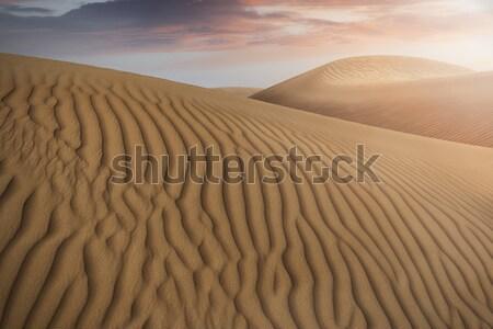 Teve karaván árnyékok sivatag homok égbolt Stock fotó © unkreatives