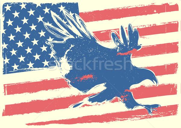 звезды орел подробный иллюстрация лысые Сток-фото © unkreatives