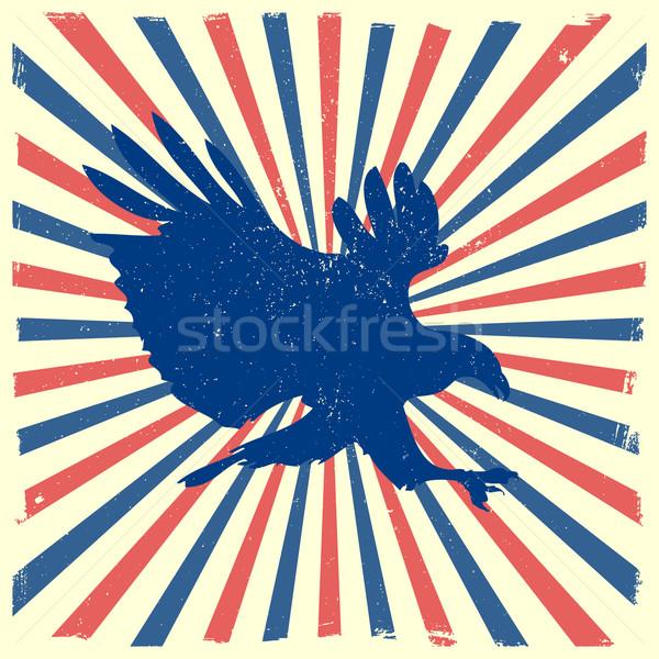 Adler Burst detaillierte Illustration bald Silhouette Stock foto © unkreatives