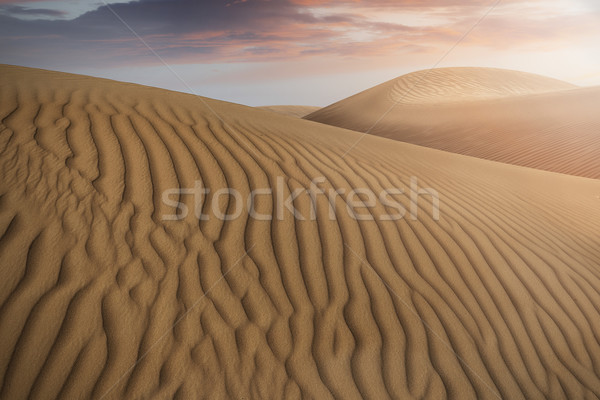 Desert Sand Dunes Stock photo © unkreatives