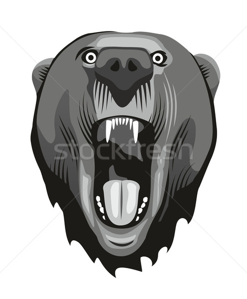 Ayı kafa agresif ağız dizayn Stok fotoğraf © unweit