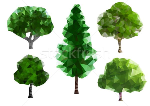 Zielone drzew pięć inny sztuki tapety Zdjęcia stock © unweit
