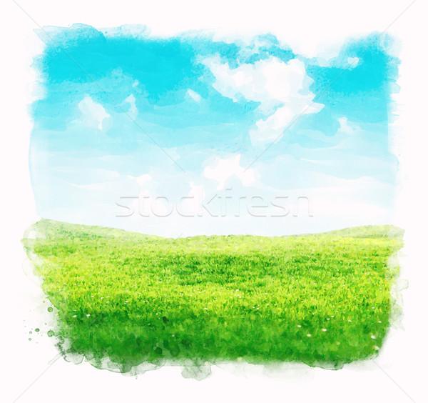 Akwarela niebo trawy zielone pola Błękitne niebo Zdjęcia stock © unweit