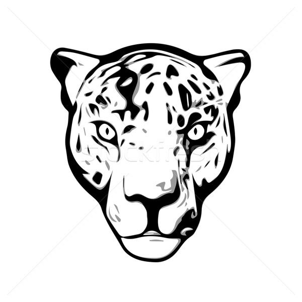 Głowie Jaguar ilustracja odizolowany biały projektu Zdjęcia stock © unweit