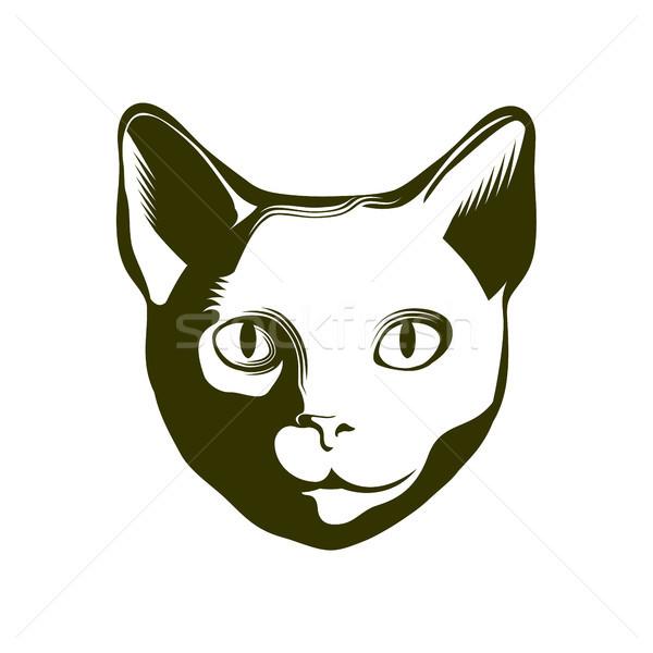 Portre kedi kafa vektör amblem dövme Stok fotoğraf © unweit