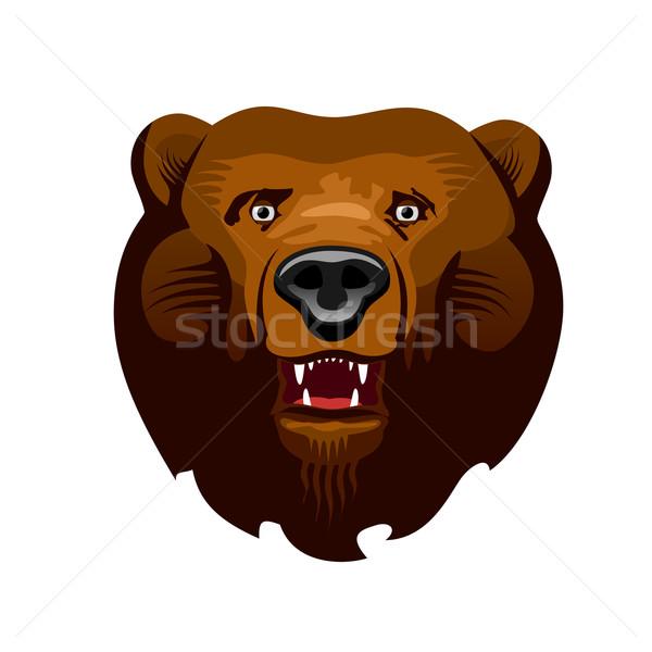 Beer hoofd ontwerp tanden objecten vector Stockfoto © unweit