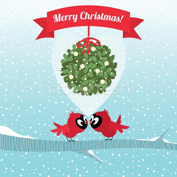 Aves beijando ramo visco natal estoque Foto stock © UrchenkoJulia