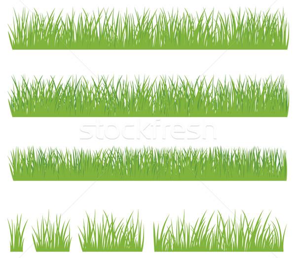 Zestaw zielona trawa odizolowany biały czas charakter Zdjęcia stock © UrchenkoJulia