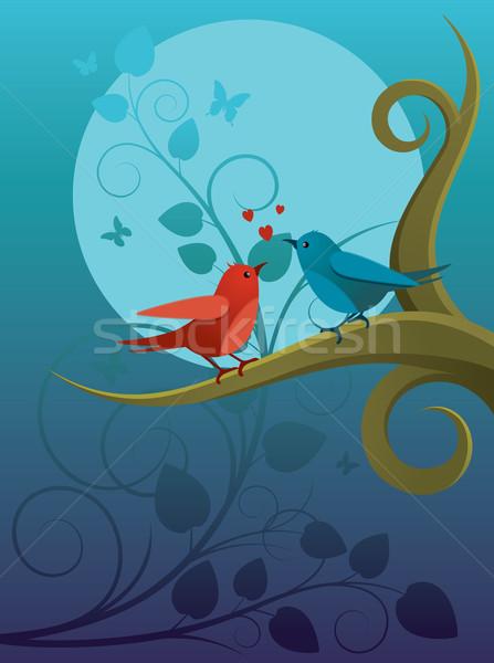 Lovers ptaszyna dwa ptaków posiedzenia oddziału Zdjęcia stock © UrchenkoJulia