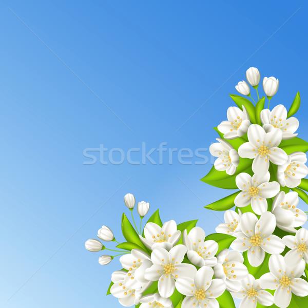 Sakura mavi gökyüzü çiçekler doğa manzara arka plan Stok fotoğraf © user_10003441