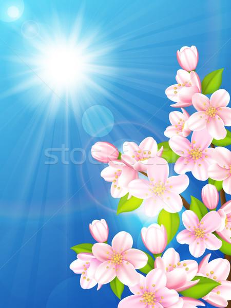 Foto stock: Cereza · árbol · árboles · cielo · azul · sol