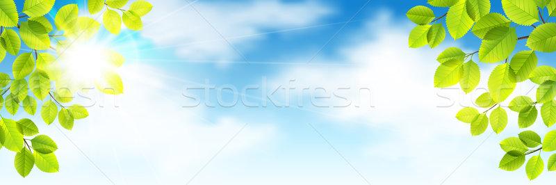 Spring vector Stock photo © user_10003441