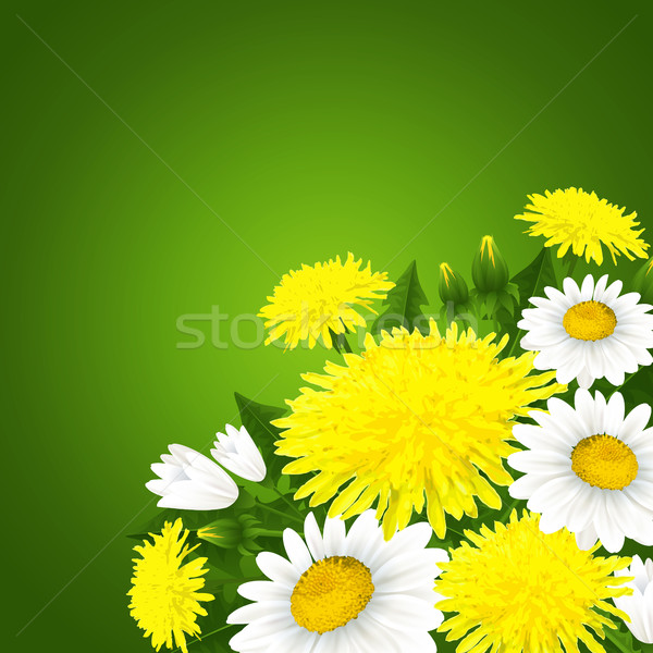 Spring flowers Stock photo © user_10003441