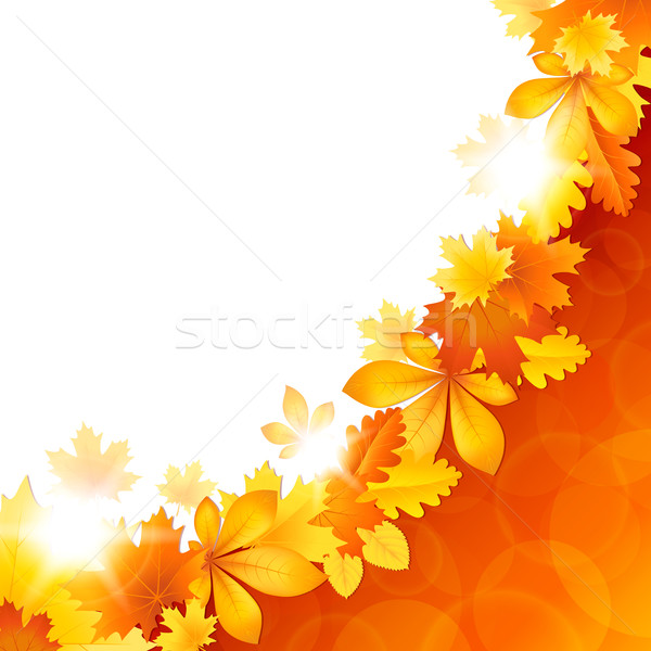 Background with autumn leaves Stock photo © user_10003441