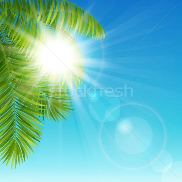 Sunny day Stock photo © user_10003441
