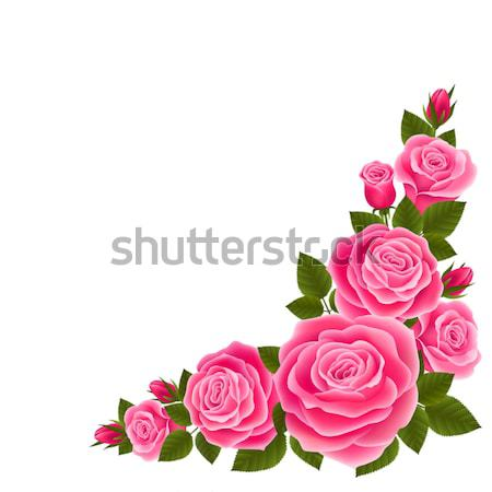 Border of roses Stock photo © user_10003441