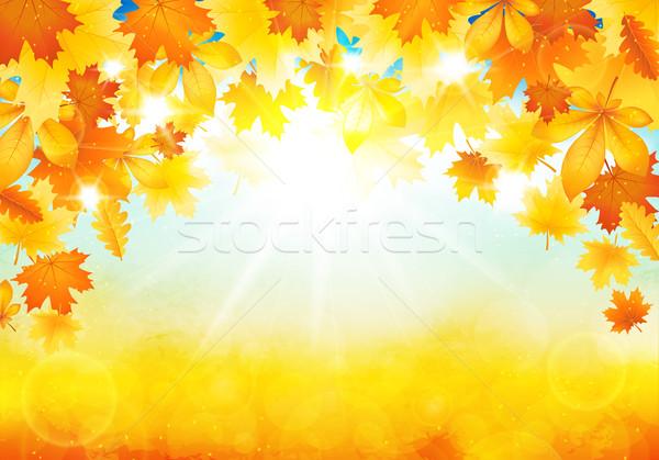 Sunny autumn day Stock photo © user_10003441