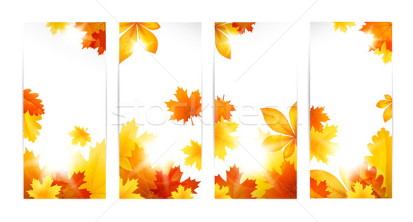 Autumn banners with leaves Stock photo © user_10003441