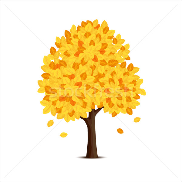 Tree with yellow leaves Stock photo © user_10003441
