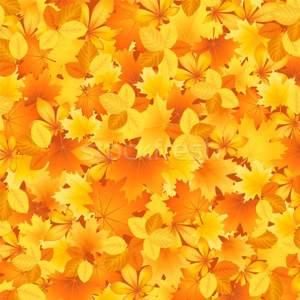Bakground of autumn leaves Stock photo © user_10003441