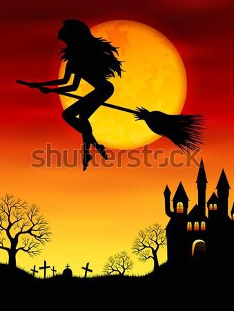 Bruxa cabo de vassoura halloween voador mulher lua Foto stock © user_10003441