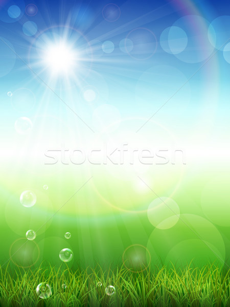 Nyár zöld fű tavasz fű háttér napfelkelte Stock fotó © user_10003441