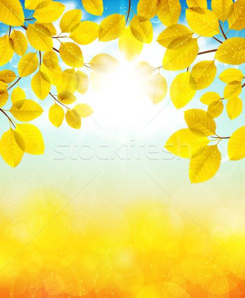 Autumn day Stock photo © user_10003441