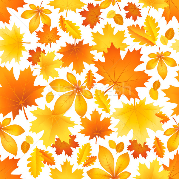Seamless pattern of autumn leaves Stock photo © user_10003441