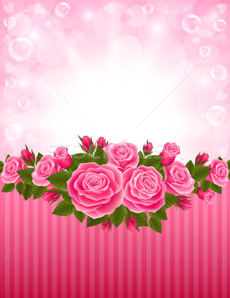 Roses backdrop Stock photo © user_10003441