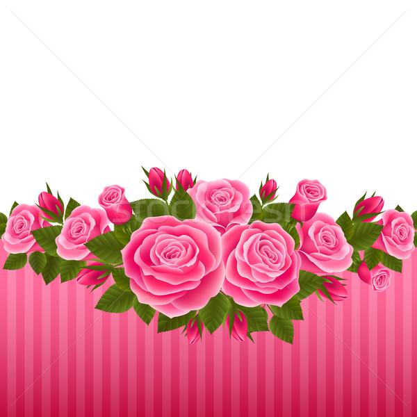 Rosas cartões postais flor primavera rosa Foto stock © user_10003441