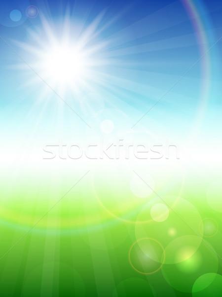 Nyár gyönyörű nap természet háttér zöld Stock fotó © user_10003441
