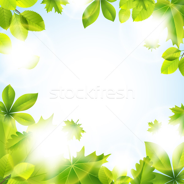 Summer background with leaves Stock fotó © user_10003441
