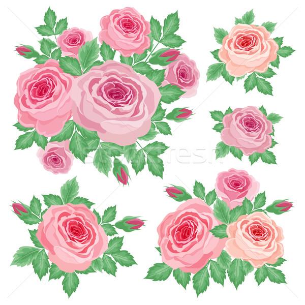 Set of roses Stock photo © user_10003441