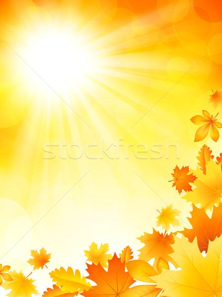 Bright autumn background Stock photo © user_10003441