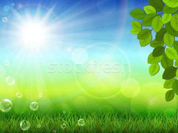 Summer landscape Stock photo © user_10003441