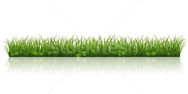 美しい 緑の草 春 泡 芝生 パノラマ ストックフォト © user_10003441